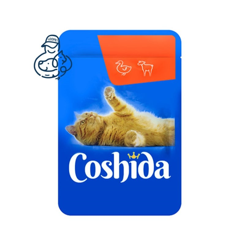 coshida cat pouch 3 min