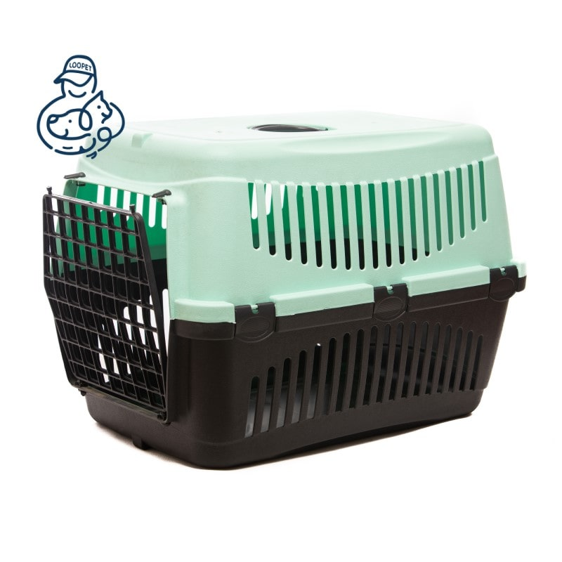 green black box 2