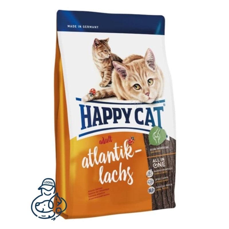 غذای خشک گربه هپی کت مدل آتلانتیک