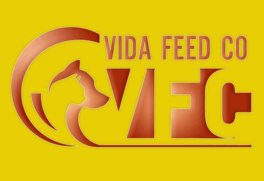 vida-feed