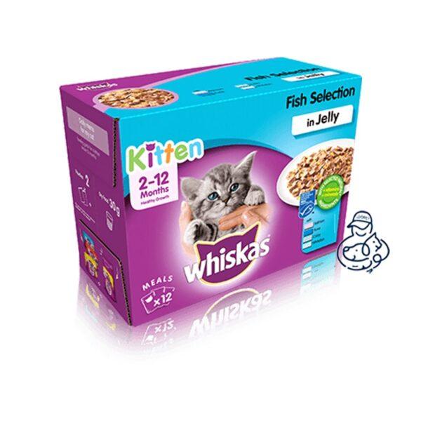 پوچ بچه گربه ویسکاس