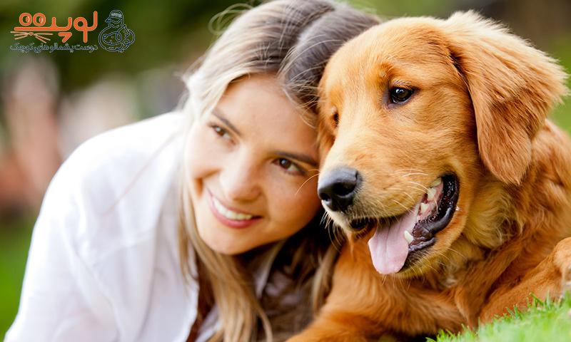 درمان فوبیای سگ و گربه